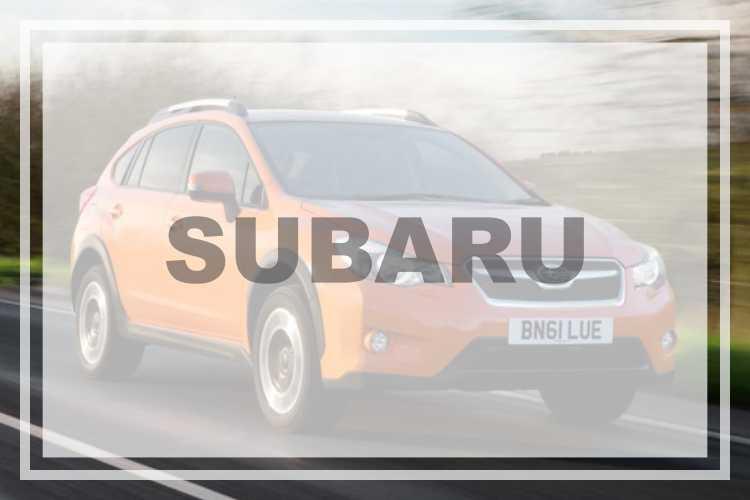 SUBARU Vehicle Decal