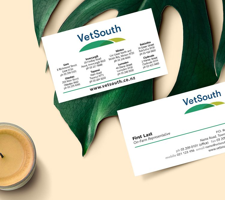 vetsouth business cards