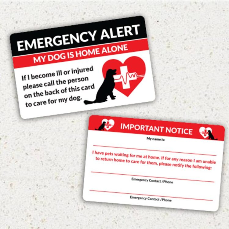 Emergency Alert Cards